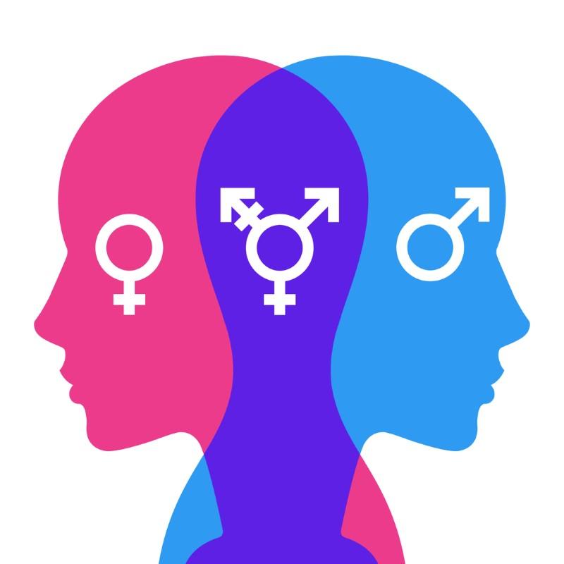 heads displaying gender symbols